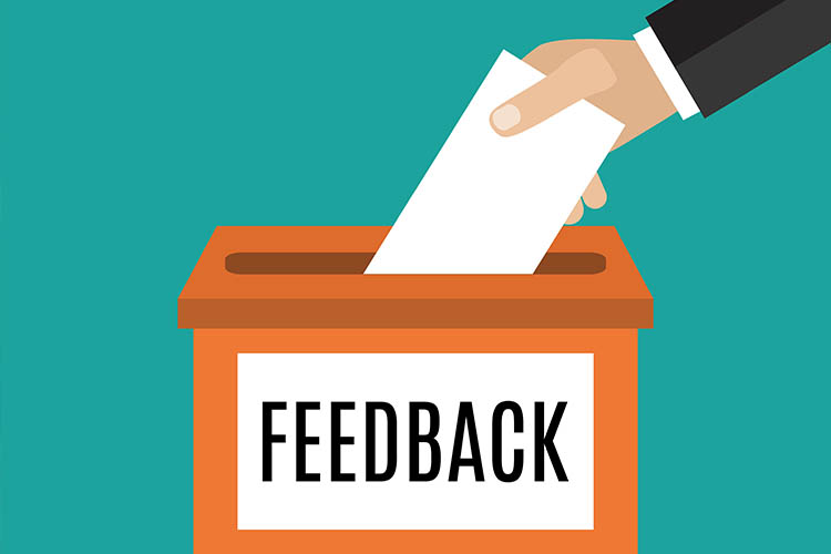 -The Feedback Session-