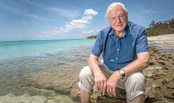 The Two Minute Bio: David Attenborough